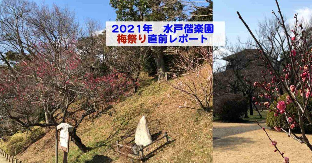 2021 偕 まつり 楽園 梅